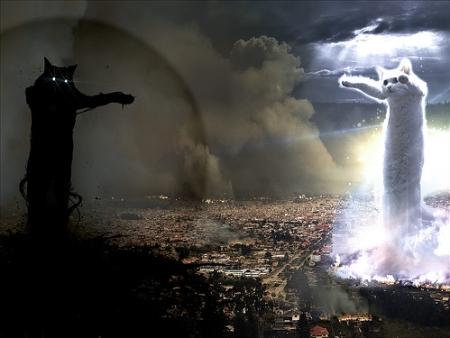 cat-tornado